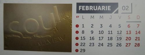 Februarie: sub semnul lui Soul şi cu piele pe spate