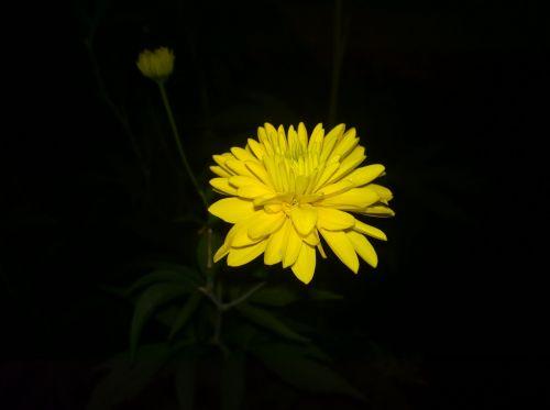 Captura nocturna cu Nokia Lumia 930