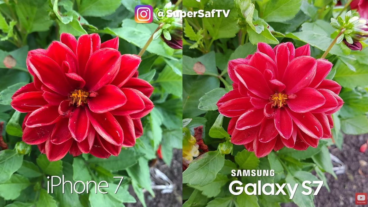 iPhone 7 vs. Galaxy S7
