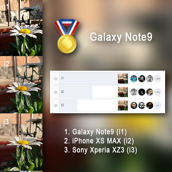 Samsung Galaxy Note 9 vs. iPhone XS Max vs. Sony Xperia XZ3, test de focalizare plan apropiat, detalii, dynamic range