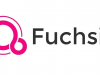 Google Fuchsia, noul sistem de operare Internet of Things are logo-ul oficial confimat
